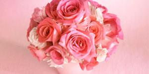 Blumen Pflegen