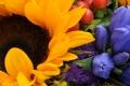 Wunderschöne Frische Blumen