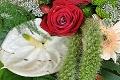 Weiße Anthurien & Rote Rosen