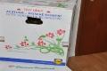 Lidl Blumen Frischekarton