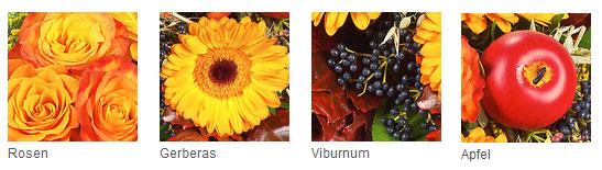 Herbst Blumen und Farben
