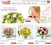 Blume2000 Webseite